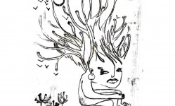 files-gallery-sahgh12[18c872b013178aad9eaaaec98215d9ac].jpg